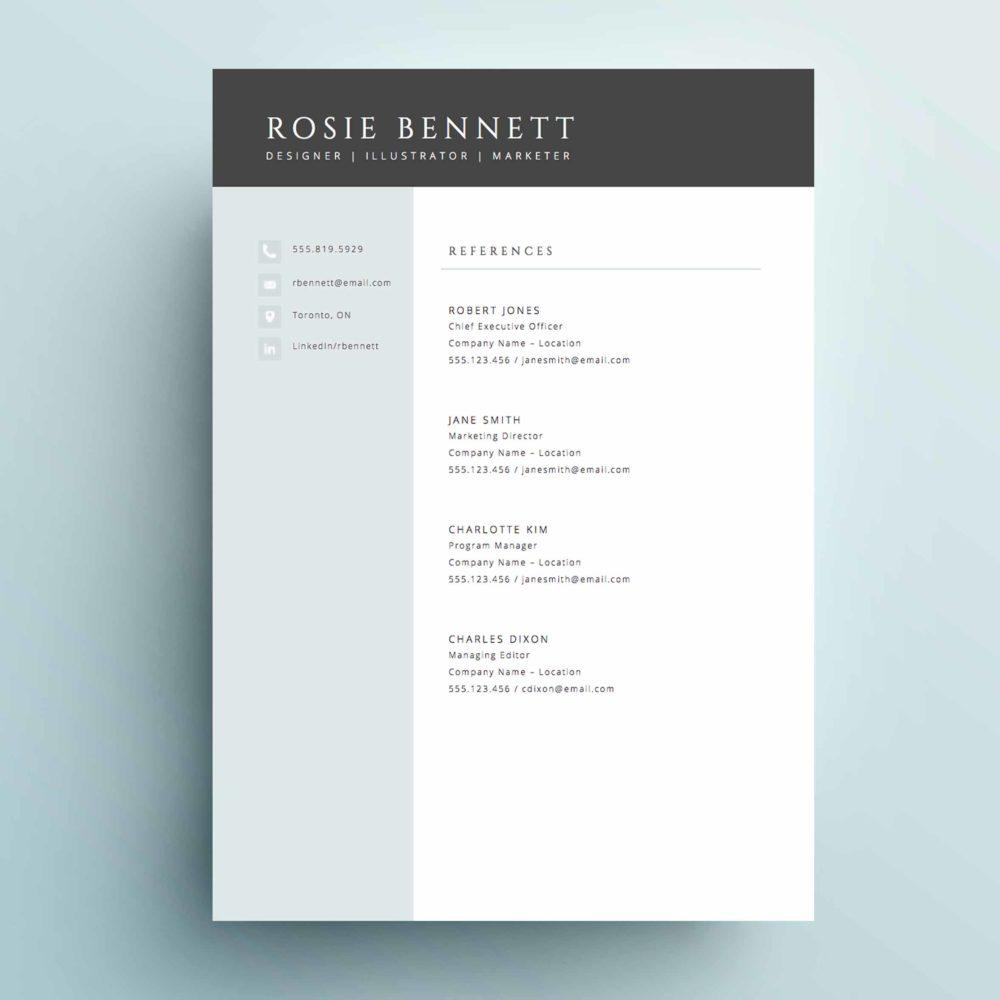 The 'Rosie' Resume Template Package