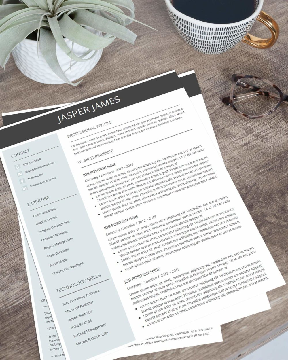 Resume Template Bundle for Google Docs - Resume Template Page 1